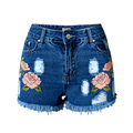 Women Denim Shorts 2017 Beautiful Embroidery 3d Flowers Patten Hole Ripped Shorts High Waist Jeans Shorts Casual Women Clothes