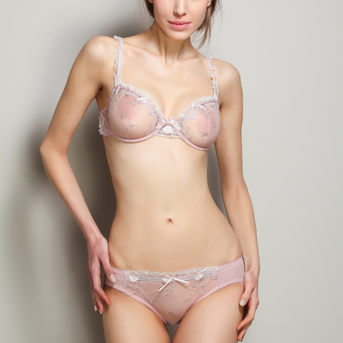 e3fc28a91a01b B4 Ultra-Thin Transparent Sexy Floral Embroidery Bowknot Bra and Panty Set  Women s Underwear Lingerie