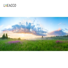 Laeacco Nature Scenic Mountains Grassland Backdrop Photography Backgrounds Customized Photographic Backdrops For Photo Studio цена