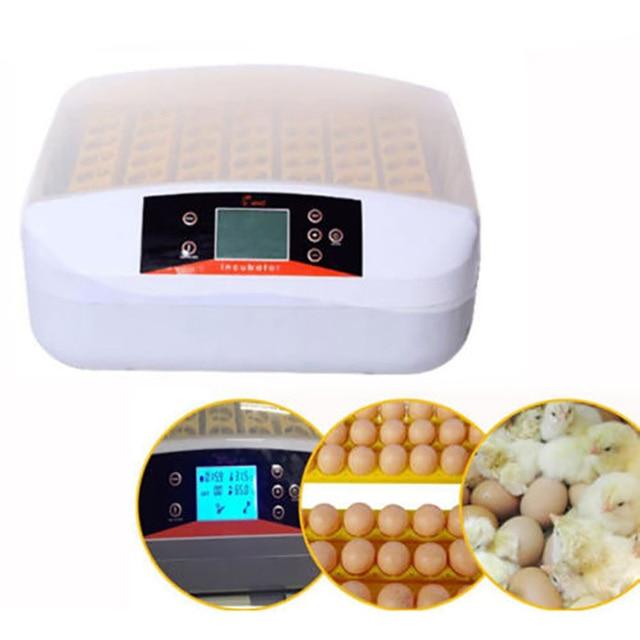 Chine Date Couveuse Automatique 56 Oeufs Incubateur Écloserie Automatique  Éclosoirs Machine Avec Indicateur de Travail Lumière 6c16c63dde87
