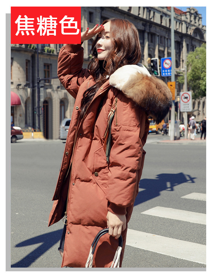 High-Quality-2018-Winter-New-Collection-Women-Hooded-Long-Down-Coat-Female-Winter-Warm-Thick-Down