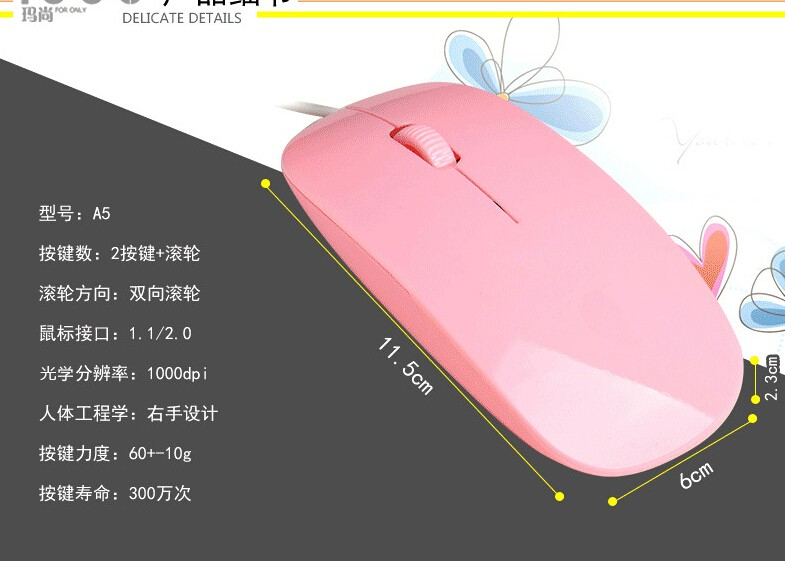 thin mouse (6)