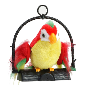 Talking Parrot Imitates And Re