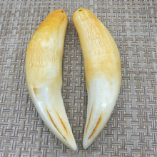 Antique Collection Natural Bone Powder Synthetic Retro Bear tooth tiger tooth Necklace Pendant