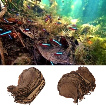 Tratamiento Natural para limpieza de peces, 50 Uds., hojas de almendra y Catappa, tanque de acuario