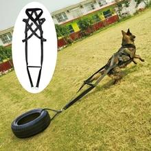 สุนัขผลิตภัณฑ์ผู้ผลิตของเล่นK9 สุนัขเทรนเนอร์อุปกรณ์เสริมสำหรับสัตว์เลี้ยงปรับได้สำหรับสุนัขขนาดกลางเยอรมัน