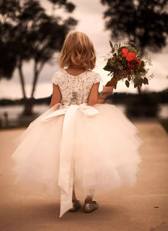 White Lace Tulle Flower Girl Dress Short capped Sleeve Sash ribbon bow Skirt Kids Formal Wear