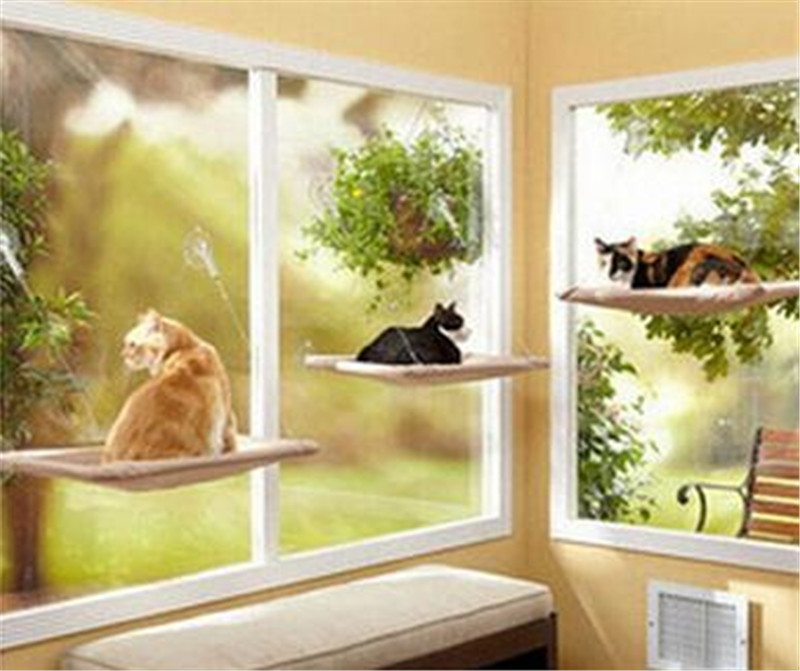 cat basking window hammock perch cushion bed hanging shelf seat great for multiple cats of household perch cozy window bed 05  in cat beds  u0026 mats from home     cat basking window hammock perch cushion bed hanging shelf seat      rh   aliexpress