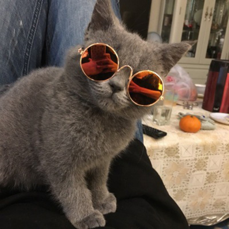 Cat Accessories Small Pet Cat Sunglasses Glasses Eye-wear Protection Pet Cool Glasses Pet Photos Props  For Dogs