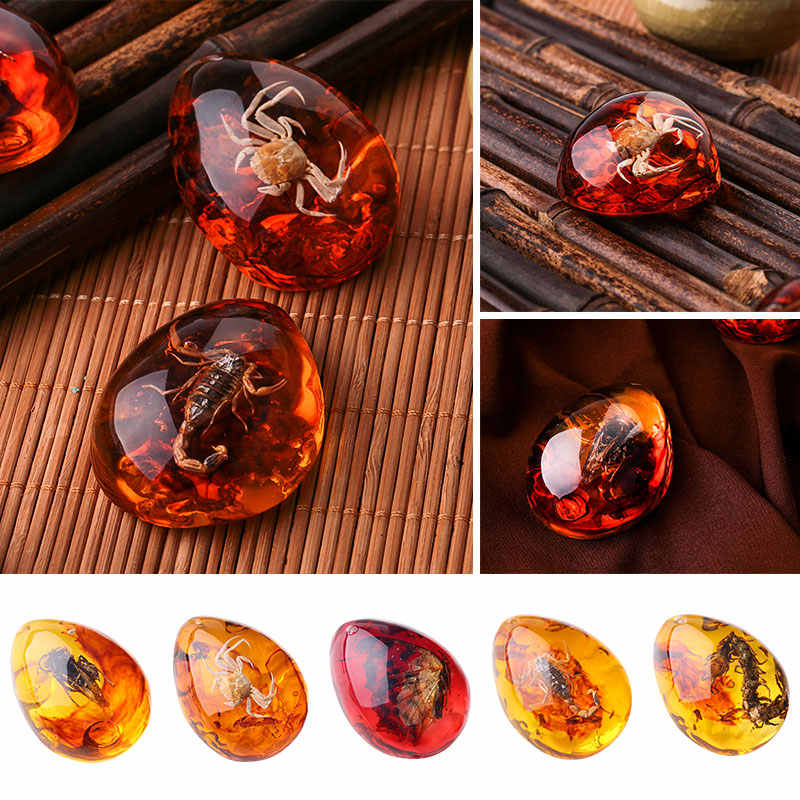 5 Color Resin Gift Insects Amber Pendant Clothes Gemstone Pendant Beautiful Gemstone Insects Pendant Necklace