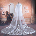 3 Meters Cathedral Wedding Veils Lace Appliqued Bridal Veil with Flowers Wedding Accessories Bride Mantilla Wedding Veil TBV16