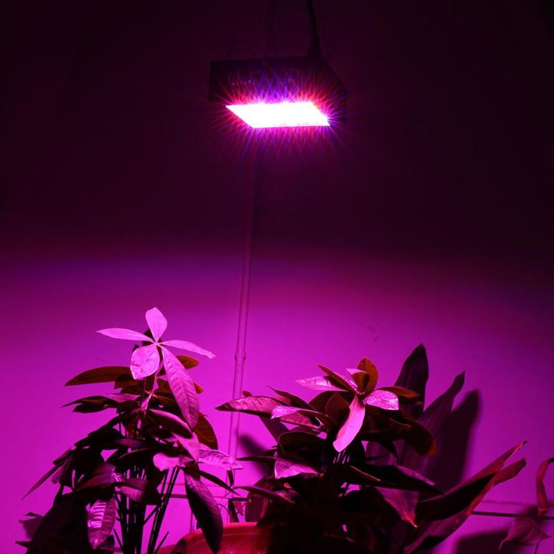 US/EU Plug LED Indoor Plant Grow Lamp Energy Saving Full Spectrum for Greenhouse Flower Vegetable Grow Tent Plant Grow Led Light hot sale 12w led plant grow lamp high bright appliable for indoor planting grow box grow tent lighting long lifespan