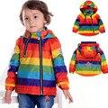 2017NEW Rainbow Niños Chaqueta Del Otoño Del Resorte Capa Del Cabrito Chica chico Ropa Windcoat Cazadora Polar interior de 1-7años
