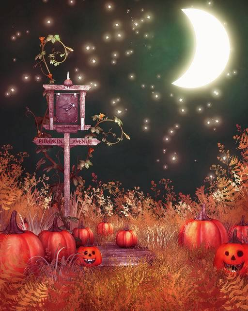 red pumpkin Photography Background Fairy Tale Hallowmas Background Computer Printed Photo backdrops for Photo studio  BG-214 2016 new arrival fairy tale photography backdrops grass photo background for newborn photo xt 4184