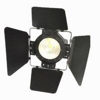 Высококачественный светодиодный 100 Вт cob par can DMX, размытый светодиодный светильник сценических эффектов со сменой цвета RGBW освещение с крыло