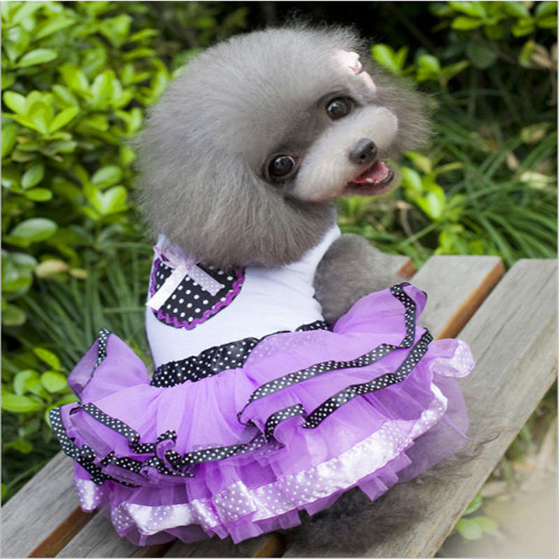 Pet Dress Dog Clothes Dress Outfit for Small Dogs Cute Pet Clothing Puppy Skirt Dog Clothes Chihuahua in Dog Coats Jackets from Home Garden