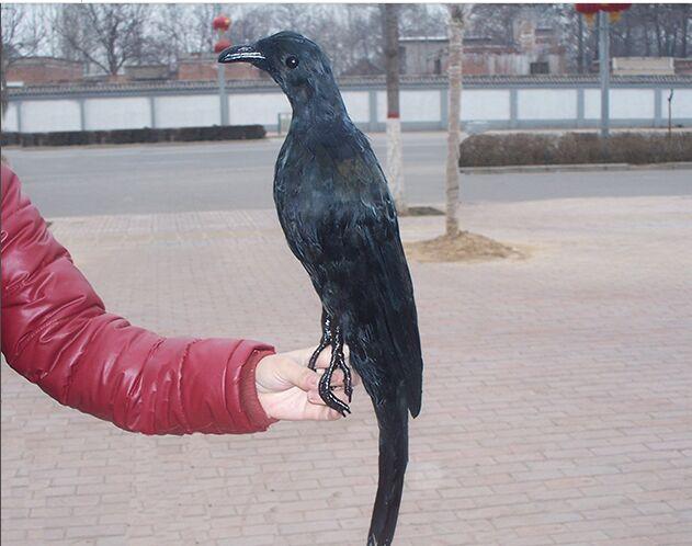 Grand modèle de corbeau de simulation mousse et plumes artisanat d'oiseau noir, prop, cadeau de décoration de jardin à la maison environ 55 cm