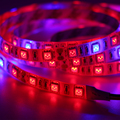 LED Grow Lights DC12V Growing LED Strip Plant Growth Light Lamp Full Spectrum 660nm red 455nm blue for Greenhouse Hydroponic