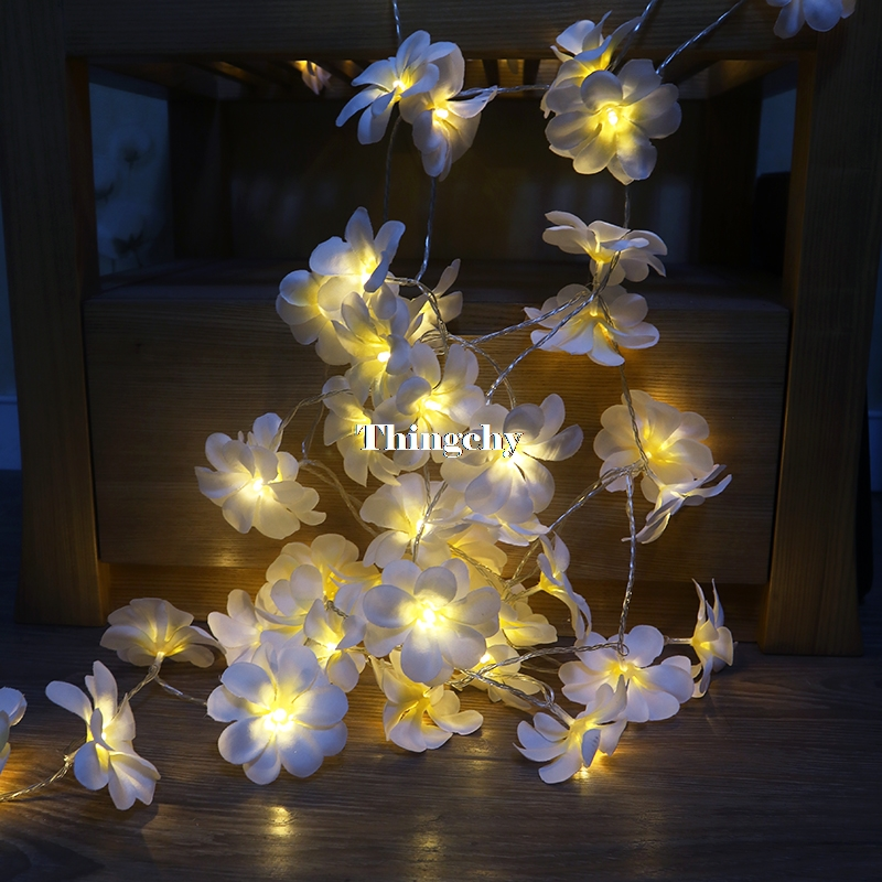 Creative DIY frangipani LED String Lights Battery floral holiday - Holiday Lighting