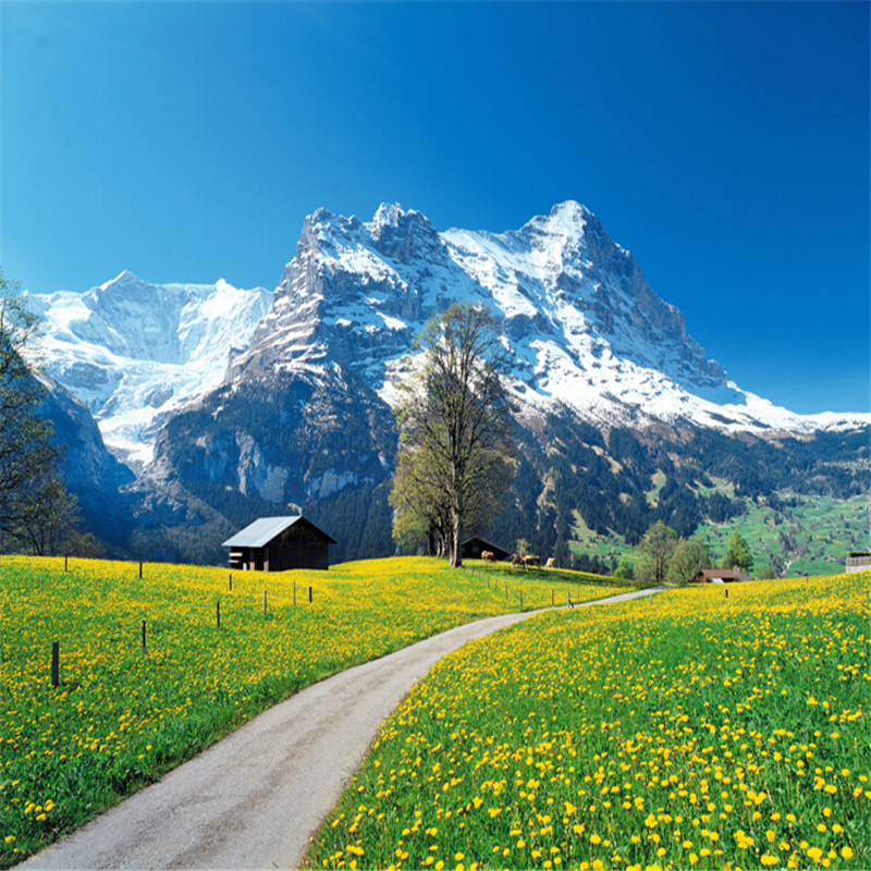 Beibehang custom 3d mural wallpaper modern three - Swiss alps wallpaper ...