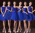 Bridesmaid Dress Formal Royal Blue Sisters With Lace Short Design Cheap summer gowns vestidos de festa Dresses