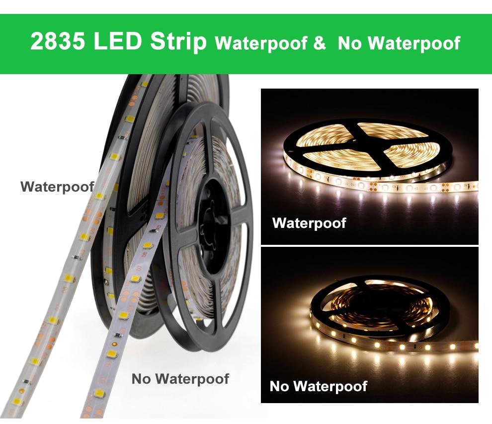 RGB LED Strip Light 5050 2835 DC12V Neon Ribbon Waterproof Flexible LED Diode Tape 60LEDs/m 5M 12V LED Strip for Home Decoration