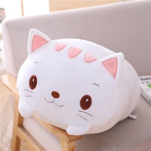 20cm cat
