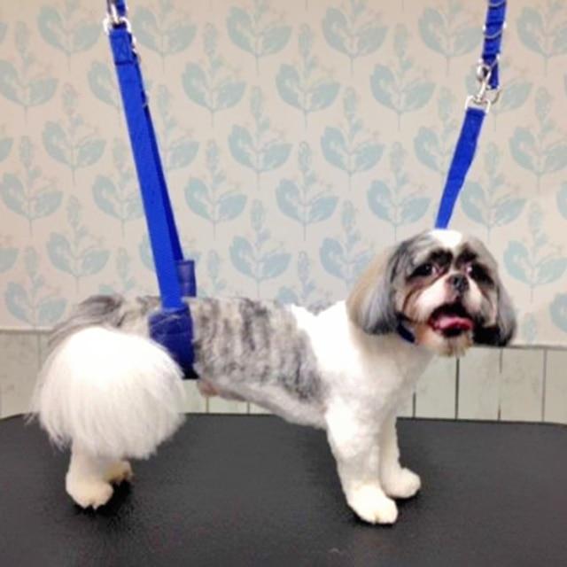 Collare di cane Regolabile Dog Grooming Belly Strap D-ring Fascia di Balneazione