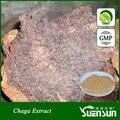 Salvaje orgánico polvo de extracto de chaga polisacárido 60% chaga polvo