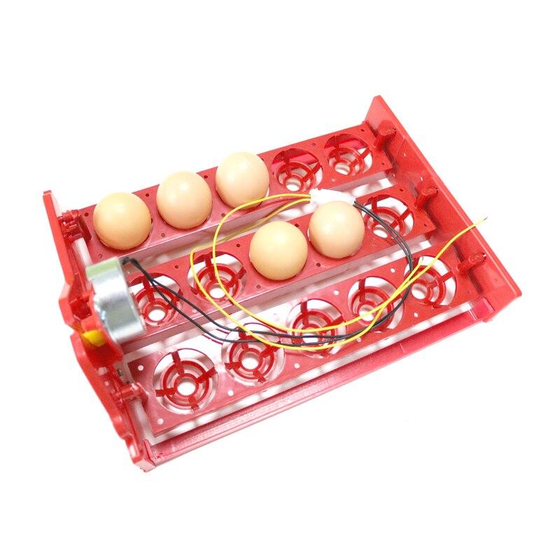 15 Incubator mini ouă Incintă automată pentru ouă Tava 220V / - Produse pentru animale de companie - Fotografie 4