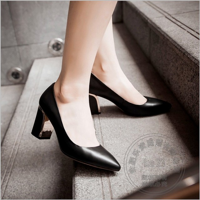 Comfortable Mature Bordered Pointed Toe High Heels Single Women ...