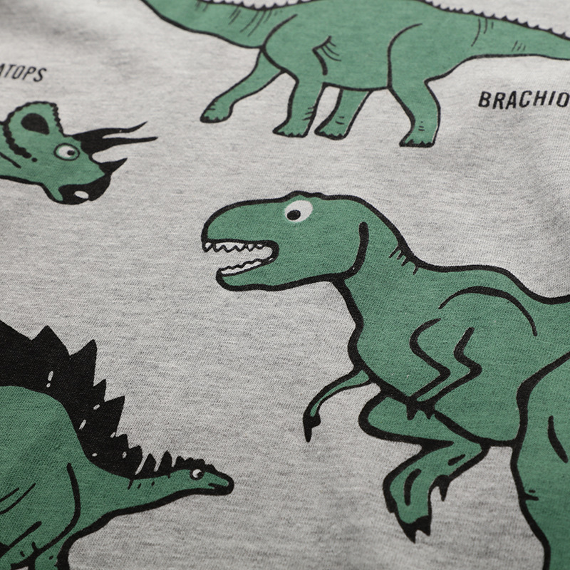Children 100 Cotton Short Sleeve T Shirt Gray Boy Cartoon Dinosaur Print Tops Tees Round Collar Kids Clothes Summer New Top in T Shirts from Mother Kids
