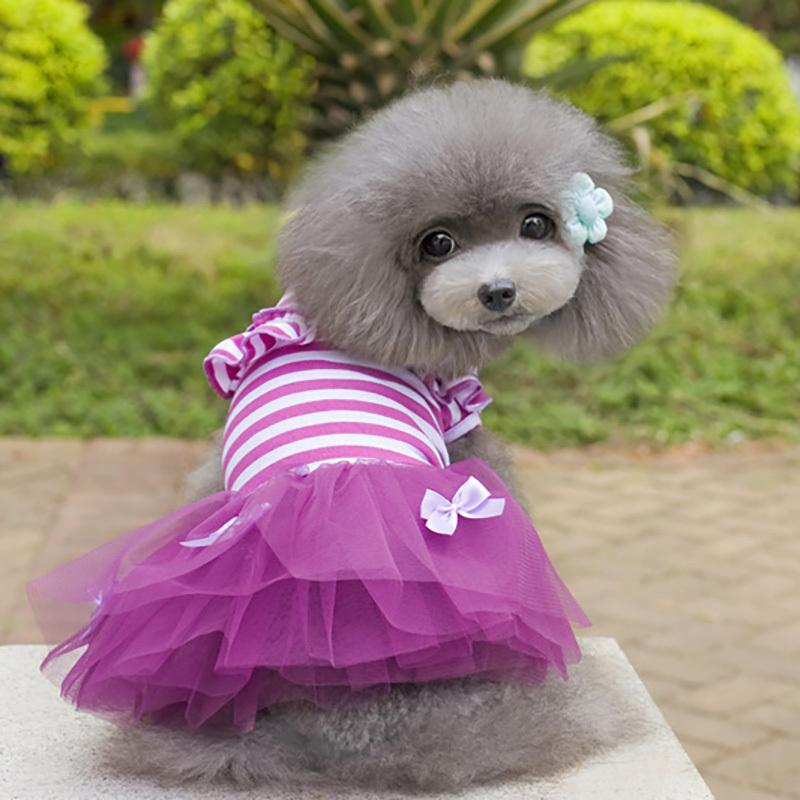 Hot Pink & Purple Summer Lace Dress for Dog Clothes , Cute Pets Dog Striped Ball Gown, Roupa Pra Cachorro
