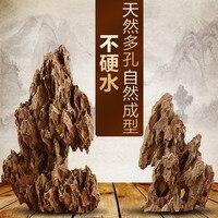 Cancellous Stone Aquarium Rockery Landscaping Fish Tank Qinglong Stone Fossil Wood Landscape Stone