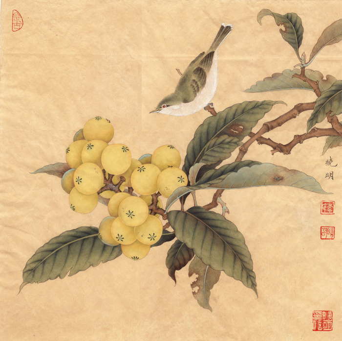classical Chinese bird loquat tree scenery oil painting canvas printings printed on canvas home wall art decoration picture