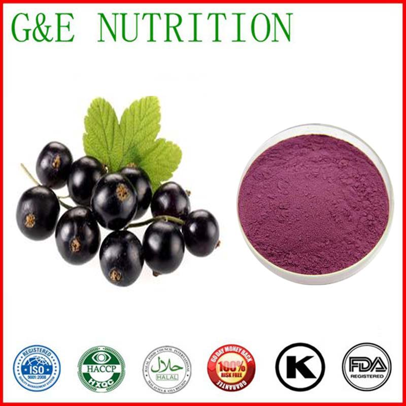 100g New Arrival Black Currant/ Cassis/ currant Extract with free shipping