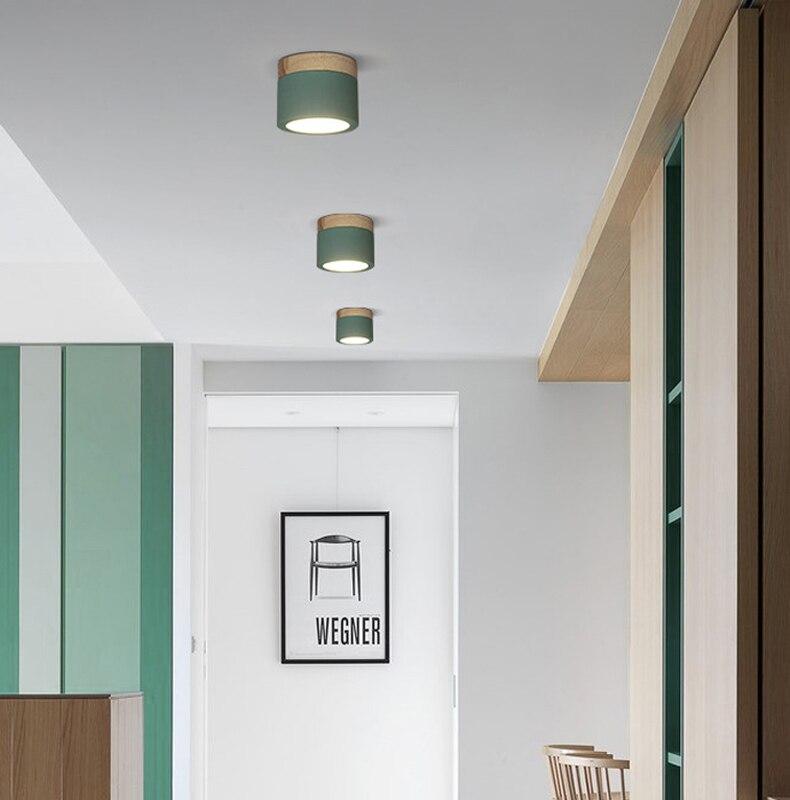 ceiling light xiang (11)