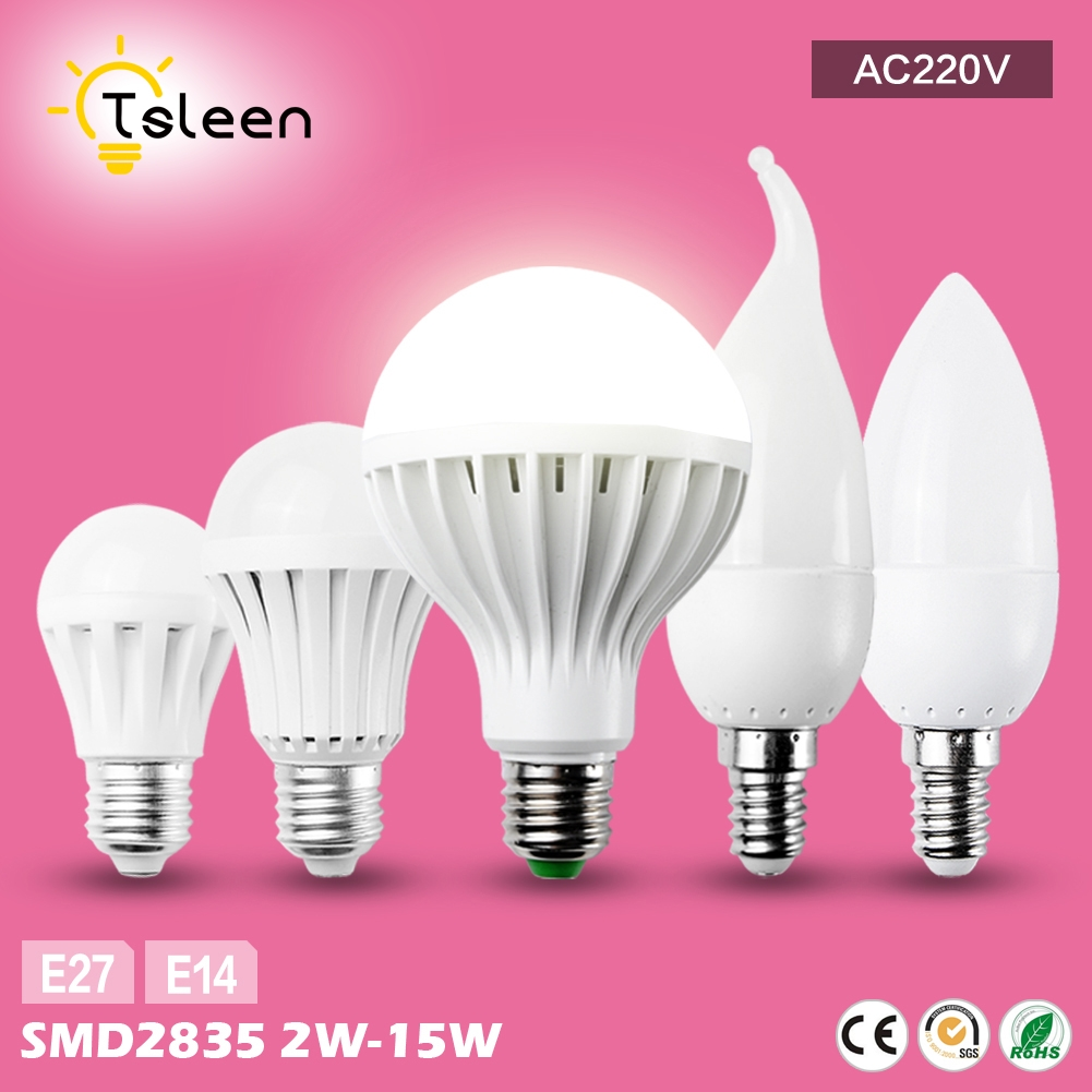 TSLEEN 1PC E14 Socket Lamp AC220V Cool Warm White Globe LED Bulb Energy Saving Light 2W 3W 5W Luminaria