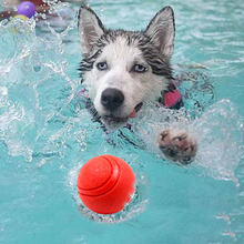 1pcs Pets Dogs Chewing Toys Supplies 5cm 6cm 7cm size TPR Floating water Ball for Small Cats To Bite Molars with Teeth