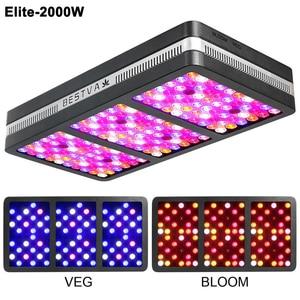 Image 4 - מקורי BestVA LED לגדול אור ספקטרום מלא COB עלית 600W 1200W 2000W Phytolamp עבור צמחים מקורה לגדול אוהל חממה צמחים