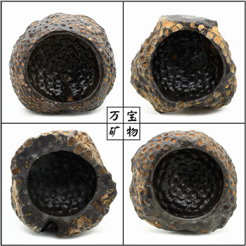 Fidelity coral fossil stone ashtray cellular base inkstone more savory meat flowerpot rocks in Guangxi