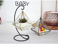 12pcs Miniature Glass Terrarium Geometric Diamond Desktop Garden Planter for Indoor Gardening Home Decor Vases wen6845