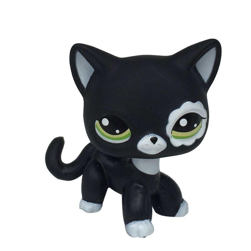 Tienda de mascotas juguetes raro Pelo Corto gato negro de pie #2249 azul 336 super hero brillo rojo Europea Kitty #2291 envío gratis