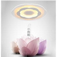 Remote Control Without Pole Dimming Simple LED Ceiling Light Acrylic Ultrathin Living Room Ceiling Lamp Bedroom