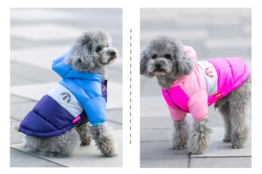 Nueva ropa de invierno para perros, abrigo impermeable con capucha 13