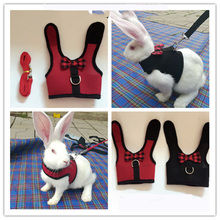 Small Pet Vest With Leash