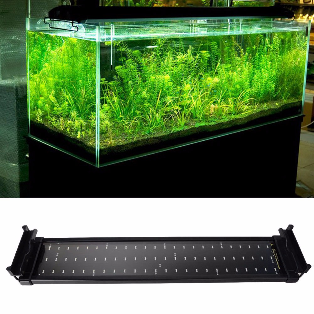 Freshwater aquarium fish for sale online uk - Order 1 Piece Aquarium Fish Tank Led Lighting Decoration 11w 50cm White Blue 72 Leds 2 Mode Extendable