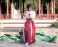 2016 de invierno nacional hanfu traje chino antiguo traje de cosplay mujeres hanfu ropa de hadas de la dinastía tang chino chino dama