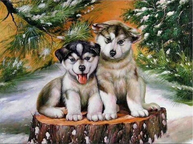 5D BRICOLAGE Diamant Broderie d'hiver chien diamant peinture point de croix animaux toute l'eau diamant mosaïque décoration CJ681