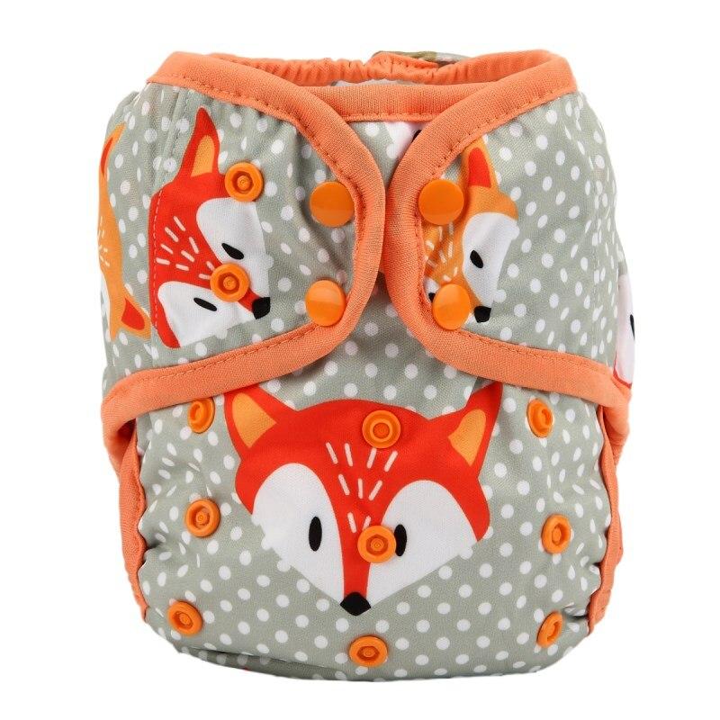 DC51 baby fox